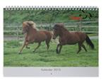kalender2015 (Custom)