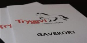 Gavekort (Custom) (2)