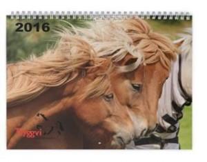 Omslag på kalender 2016