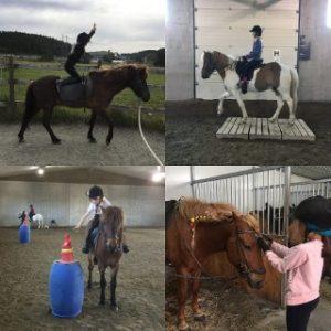Voltige, gymkhana og kos med hestene